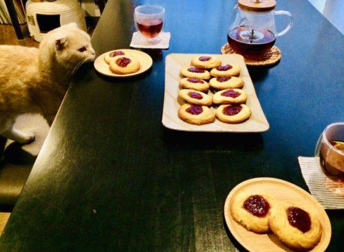猫とジャムバタークッキー